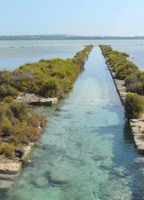Ses Salines Natural Park